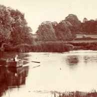 Horkesley Lock Pool, Nayland
